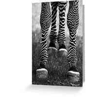 Zeb Legs Greeting Card