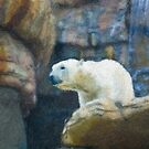 Stylized photo of polar bear on rocks in front of waterfall. by NaturaLight