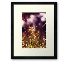 Tao Framed Print