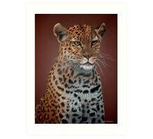 Leopard Elegance Art Print