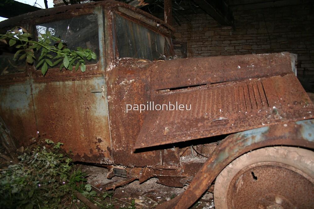 Rusty Car by Pamela Jayne Smith