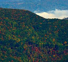 Blue Ridge Parkway, North Carolina by fauselr