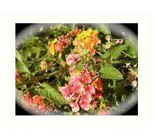 Floral wonder! Art Print