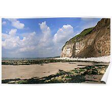 South Landing - Flamborough Head. Poster