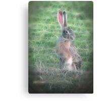 In The Brier Patch Canvas Print