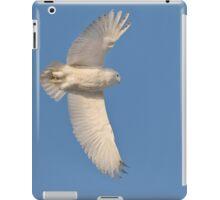 Soaring iPad Case/Skin