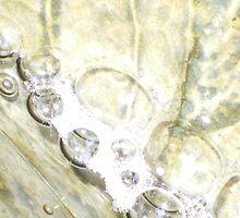 Golden Bubbles by Rebekah  McLeod