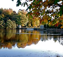 Studley Royal Water Gardens-The Lake by dougie1