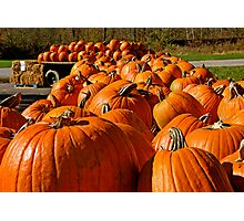 The Great Pumpkins Photographic Print
