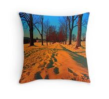 Winter avenue trail at sundown | landscape photography Throw Pillow