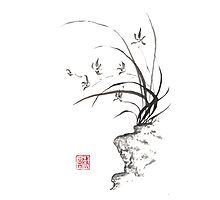 Dancing on the edge sumi-e painting  Photographic Print