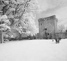 Loch Leaven Castle by Mark Jones