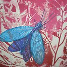 Collograph: Dobson Fly by Marion Chapman