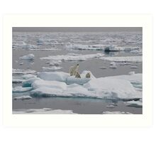Going With The Floe! Art Print