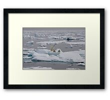 Going With The Floe! Framed Print