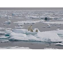 Going With The Floe! Photographic Print