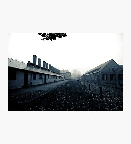 Auschwitz Photographic Print