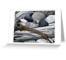 drift wood and omar Greeting Card