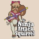 Ninja Attack Squirrel 2 by TehBurningDonut