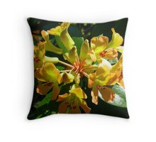 Eclipsed  by the sun Throw Pillow