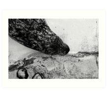 Sea - A View  Art Print