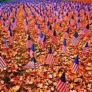 4716 flags of death by Jason Platt