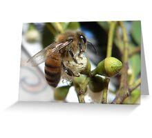 Bee VI Greeting Card