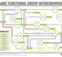 Organic Chemistry Reaction Map by Compound Interest