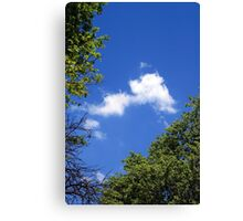 Trees and sky  Canvas Print