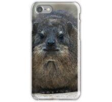 Rock Hyrax iPhone Case/Skin