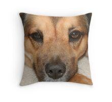 A Dog's Nose Knows... Throw Pillow