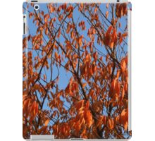 Nature 5 iPad Case/Skin