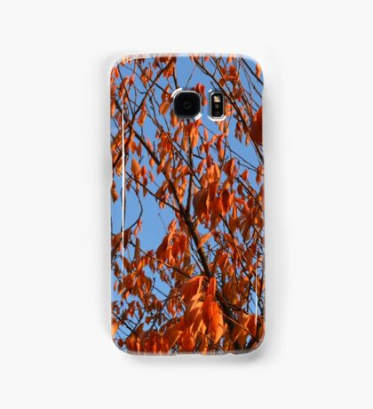 Nature 5 Samsung Galaxy Case/Skin