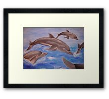 Dolphin High Five Framed Print