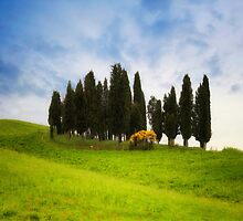 Tuscany by Joana Kruse