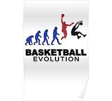 Evolution basket Dunk ! Poster