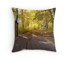 Fall colours. Throw Pillow