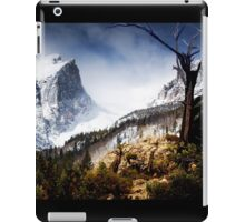 Winter's Valley iPad Case/Skin