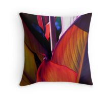 appearances are deceiving Throw Pillow