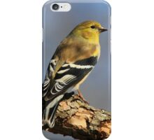Gold Finch iPhone Case/Skin