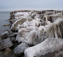 Ice Rocks by Debra  Butler