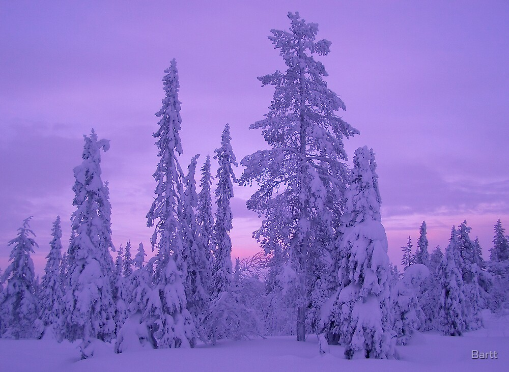 Lapland Evenings 1 by Bartt