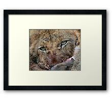 A promise of things to come.... Framed Print
