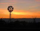 Silent Windmill by Leanna Lomanski