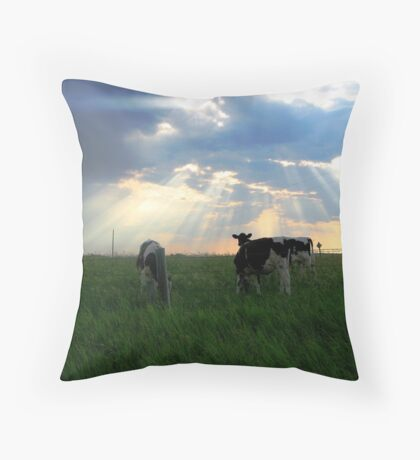 Holy Cows Throw Pillow