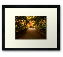 Utica, IL Bridging the Colors  Framed Print