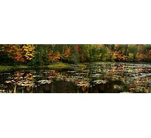 Autumanl Panorama Photographic Print
