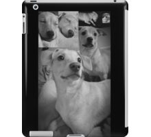 Pretty Posing Puppies iPad Case/Skin