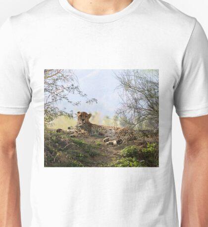 The Living Desert - A magnificent Cheetah.... T-Shirt