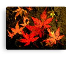 autumn canvas ... Canvas Print